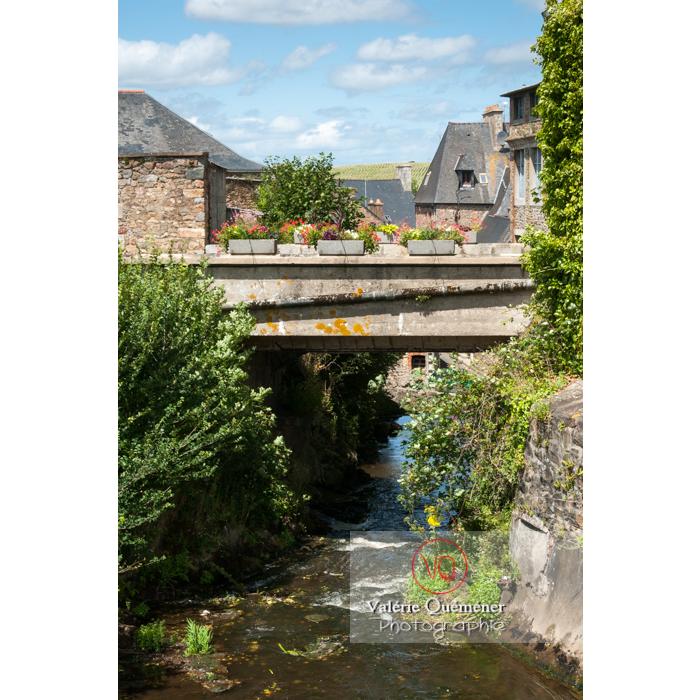 Rivière Le Leff passant à Châtelaudren / Côtes d'Armor / Bretagne - Réf : VQFR22-0451 (Q2)