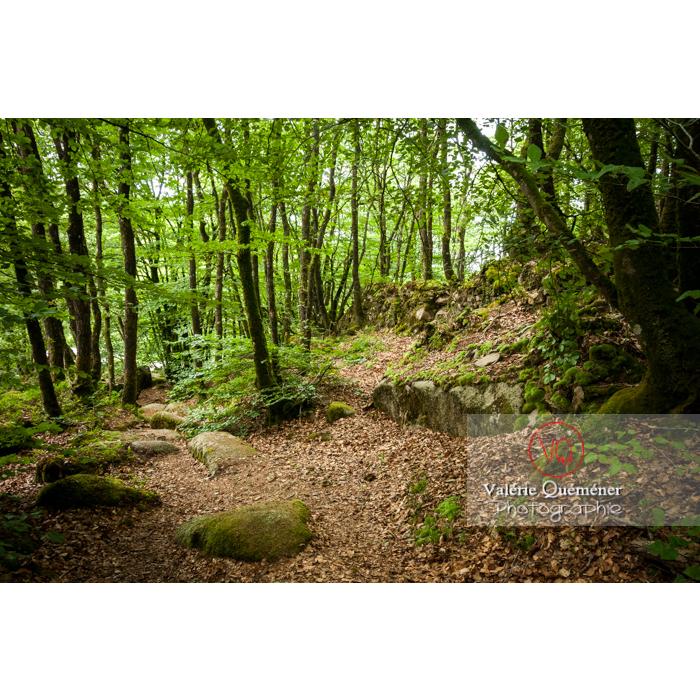 Chaos de Toul-Goulic à Lanrivain / Côtes d'Armor / Bretagne - Réf : VQFR22-0497 (Q2)