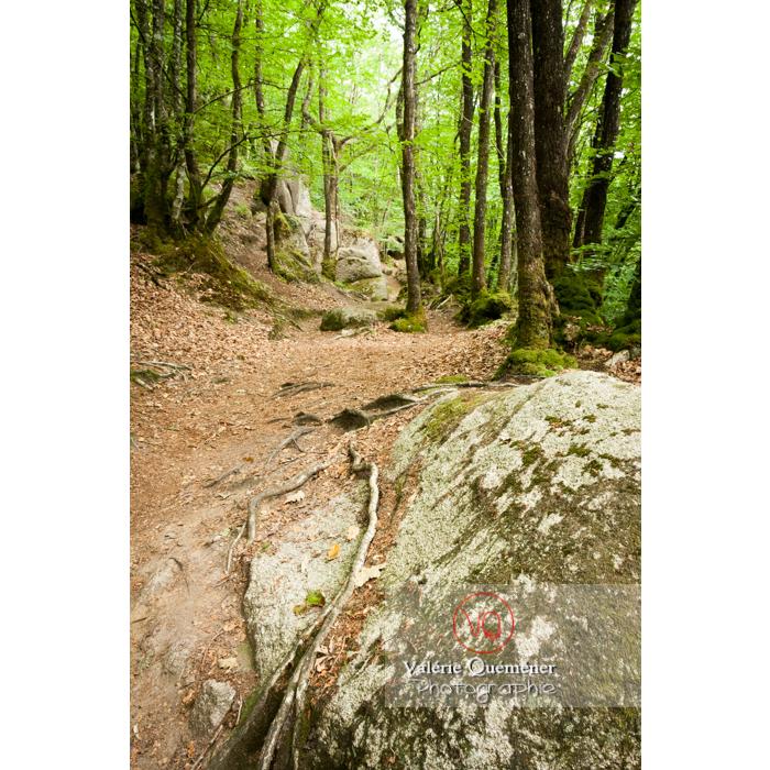 Chaos de Toul-Goulic à Lanrivain / Côtes d'Armor / Bretagne - Réf : VQFR22-0499 (Q2)