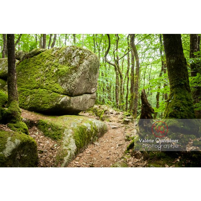Chaos de Toul-Goulic à Lanrivain / Côtes d'Armor / Bretagne - Réf : VQFR22-0506 (Q2)