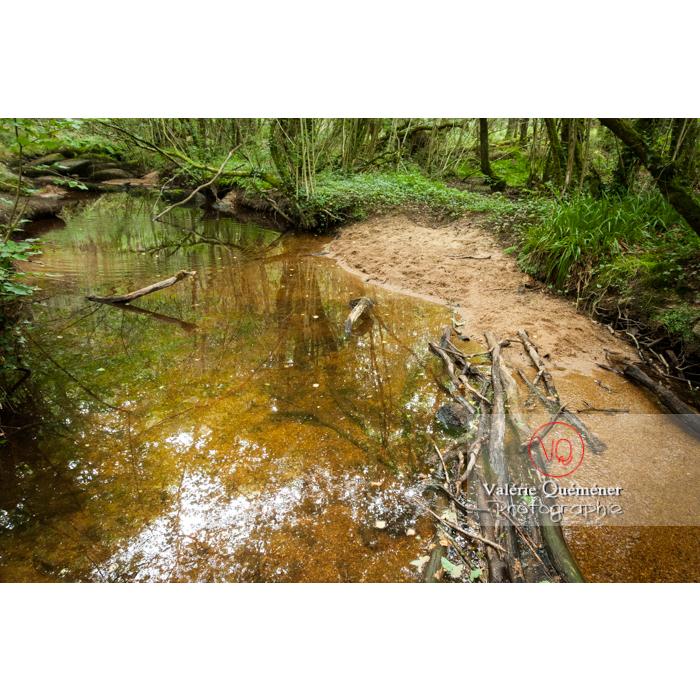 Rivière le Blavet dans les chaos de Toul-Goulic à Lanrivain / Côtes d'Armor / Bretagne - Réf : VQFR22-0507 (Q2)