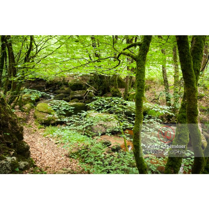 Chaos de Toul-Goulic à Lanrivain / Côtes d'Armor / Bretagne - Réf : VQFR22-0508 (Q2)
