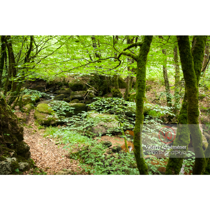 Les chaos de Toul-Goulic / Côtes d'Armor / Bretagne - Réf : VQFR22-0508 (Q2)