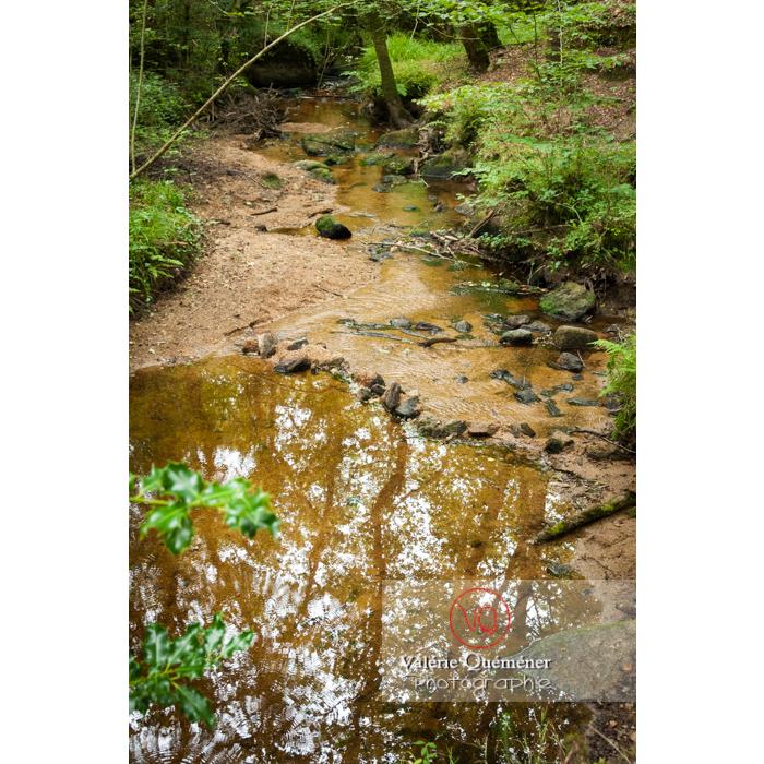 Rivière le Blavet dans les chaos de Toul-Goulic à Lanrivain / Côtes d'Armor / Bretagne - Réf : VQFR22-0510 (Q2)
