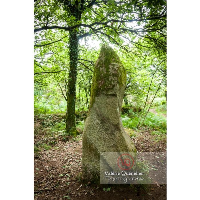 Menhir Le Guellec à Locarn / Côtes d'Armor / Bretagne - Réf : VQFR22-0513 (Q2)