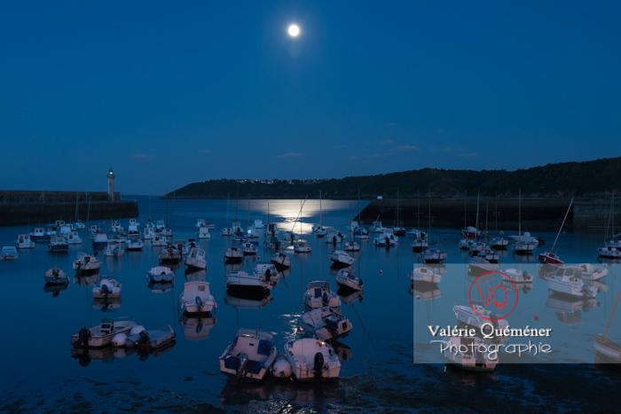 Port de Binic une nuit de pleine lune / Côtes d'Armor / Bretagne - Réf : VQFR22-0964 (Q2)