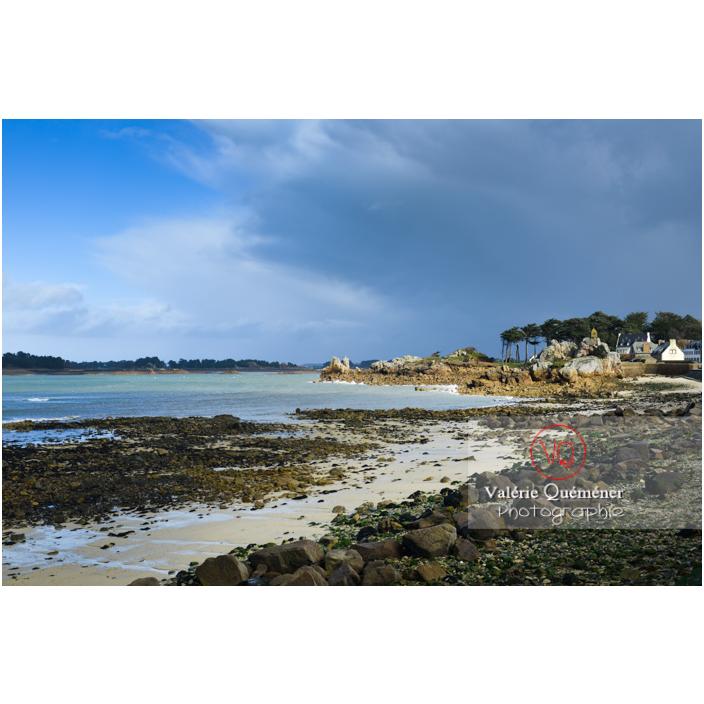 Baie de Port-Blanc à marée basse, commune de Penvénan / Côtes d'Armor (22) / France - Réf : VQFR22-3029 (Q3)