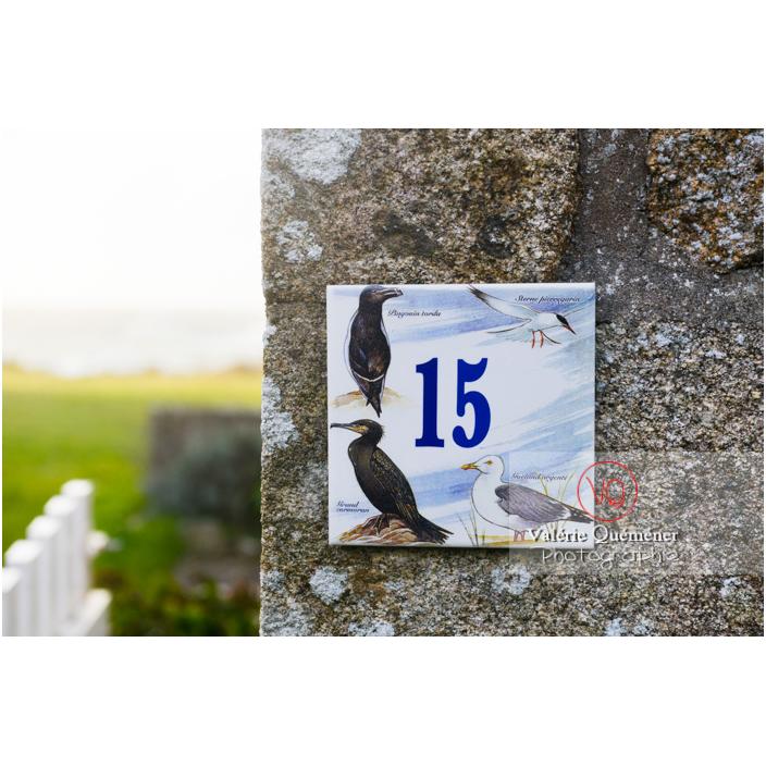 Plaque numéro de maison décorée d'oiseaux de mer, Port-Blanc, commune de Penvénan / Côtes d'Armor (22) / France - Réf : VQFR22-3047 (Q3)