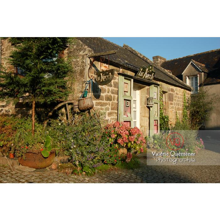 Plantes autours d'une maison en pierres à Locronan / Finistère / Bretagne - Réf : VQFR29-0176 (Q1)