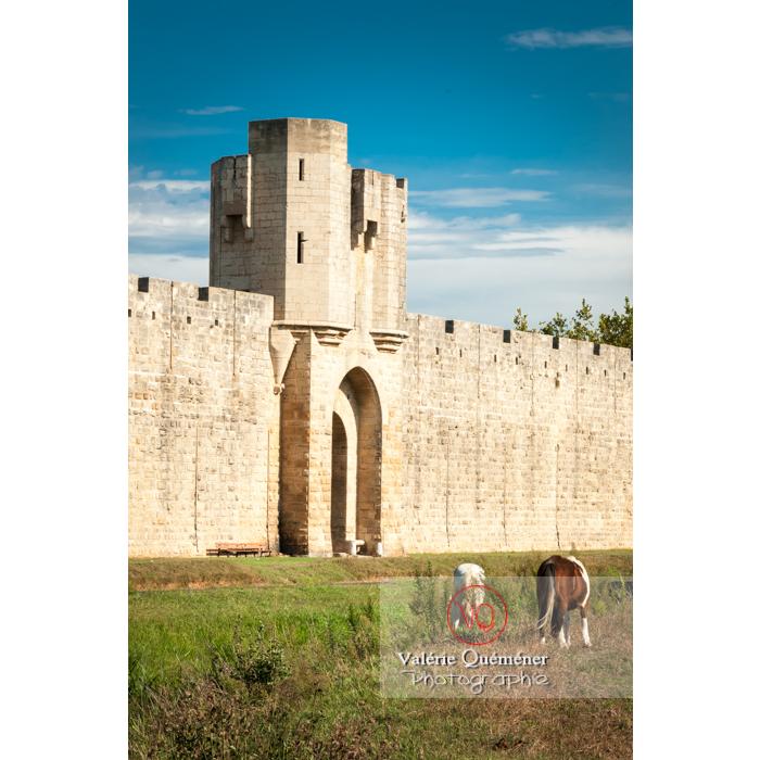 Une des porte des remparts de la ville fortifiée d'Aigues-Mortes / Gard / Occitanie - Réf : VQFR30-0019 (Q2)