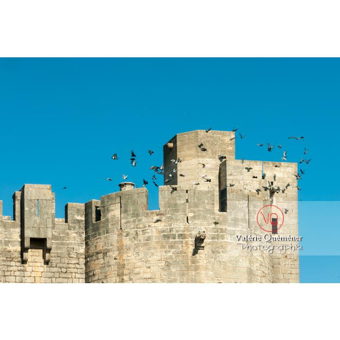Détail d'une tour des remparts de la ville fortifiée d'Aigues-Mortes / Gard / Occitanie - Réf : VQFR30-0023 (Q2)