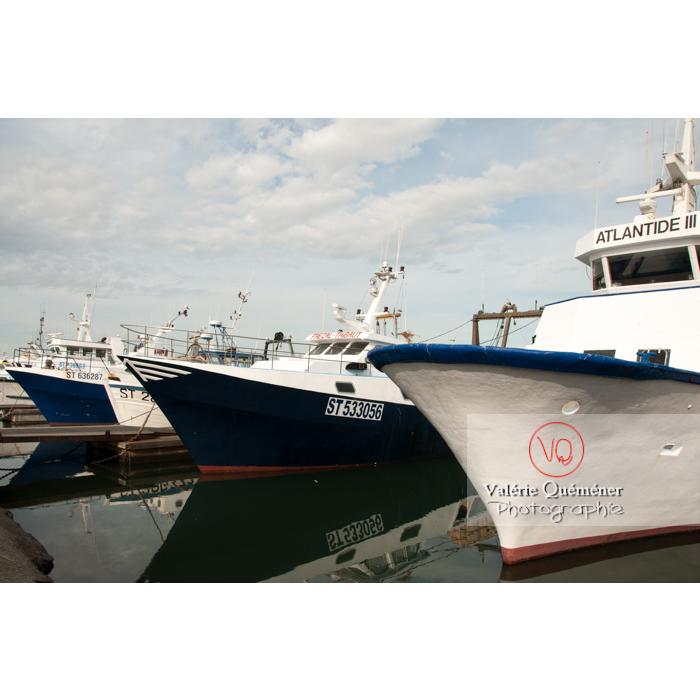 Bateaux de pêche au port du Grau-du-Roi / Gard / Occitanie - Réf : VQFR30-0028 (Q2)