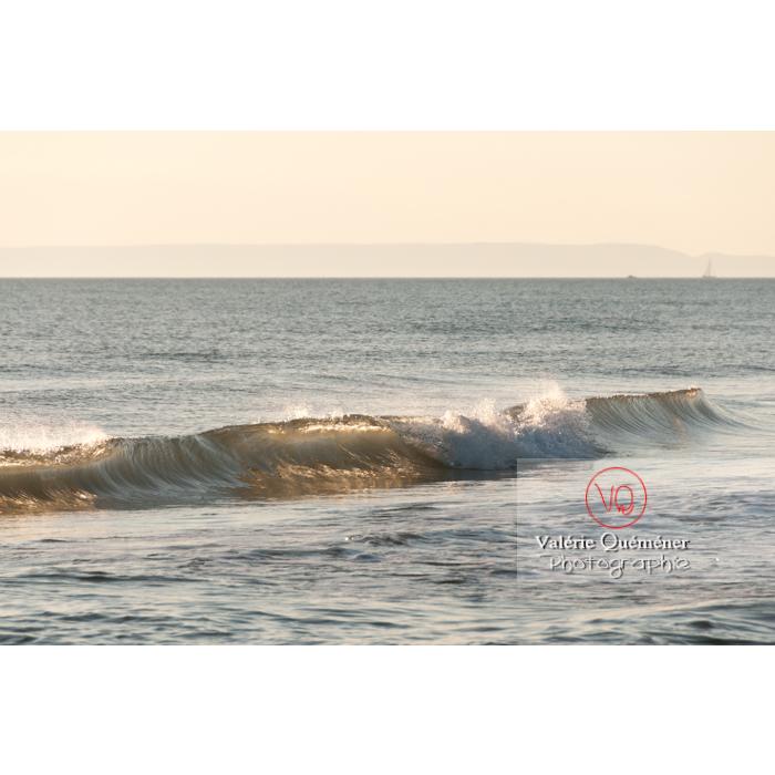 Depuis la plage de l'Espiguette en petite camargue / Gard / Occitanie - Réf : VQFR30-0068 (Q2)