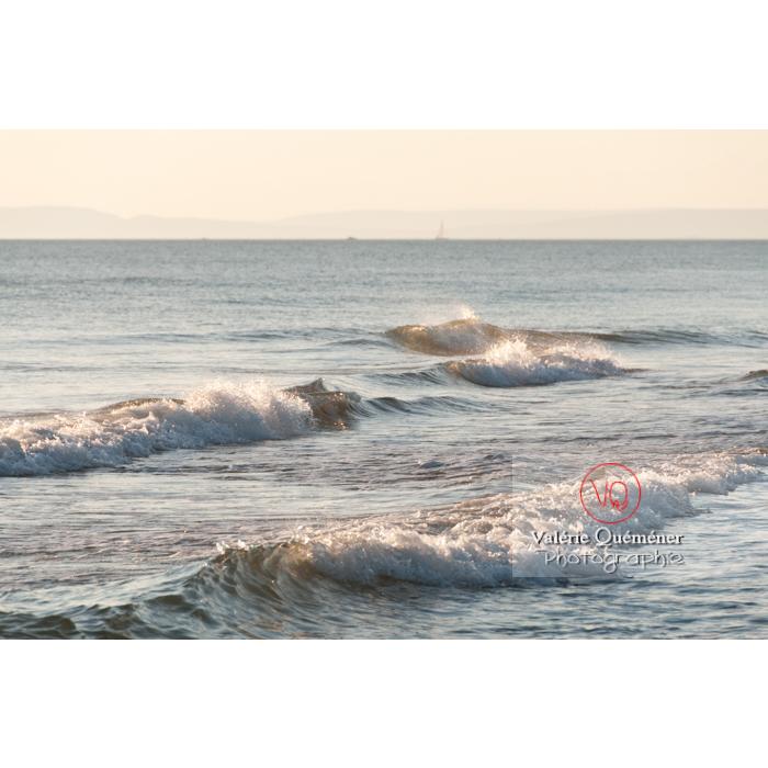 Depuis la plage de l'Espiguette en petite camargue / Gard / Occitanie - Réf : VQFR30-0072 (Q2)