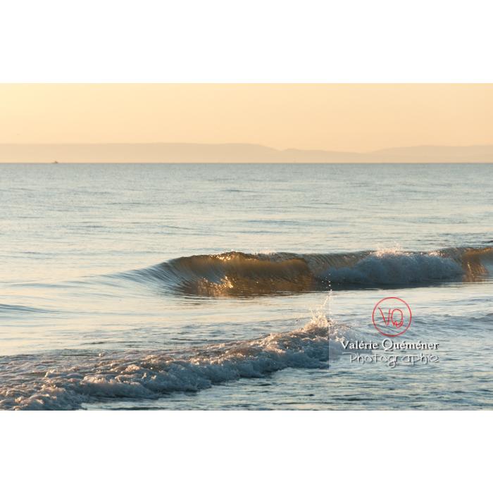 Soirée ensoleillée à la plage de l'Espiguette, petite camargue / Gard / Occitanie - Réf : VQFR30-0090 (Q2)