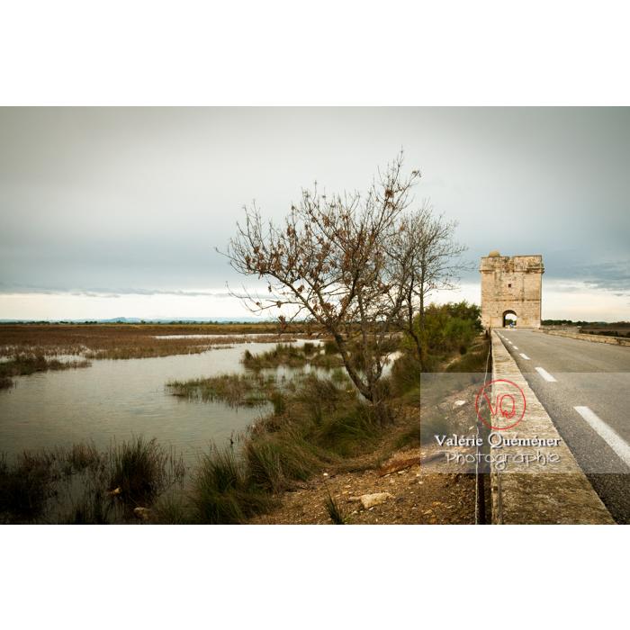Lagune en Petite Camargue et Tour Carbonnière (MH) dans le Gard - Réf : VQFR30-0102 (Q2)