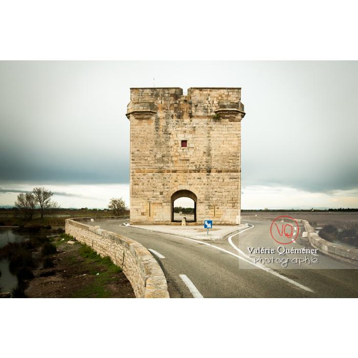 Petite camargue près de la tour Carbonnière dans le Gard - Réf : VQFR30-0105 (Q2)