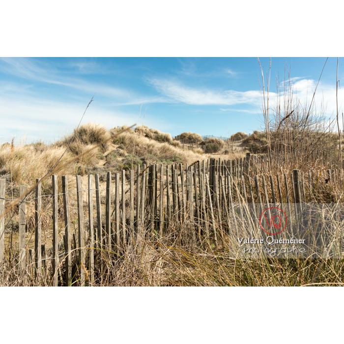 Dunes de la pointe de l'Espiguette en petite camargue / Gard / Occitanie - Réf : VQFR30-0237 (Q3)