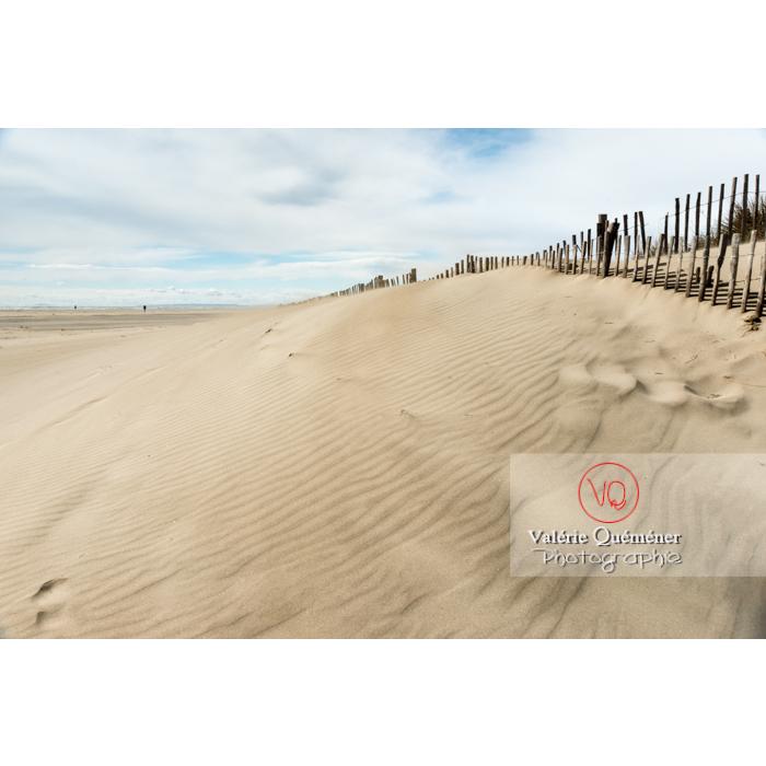 Dunes de la pointe de l'Espiguette en petite camargue / Gard / Occitanie - Réf : VQFR30-0240 (Q3)