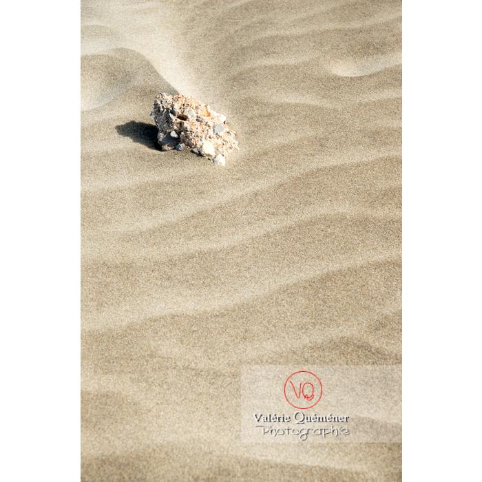 Sable fin et agglomérat de coquillages à la pointe de l'Espiguette en petite camargue / Gard / Occitanie - Réf : VQFR30-0245 (Q3)
