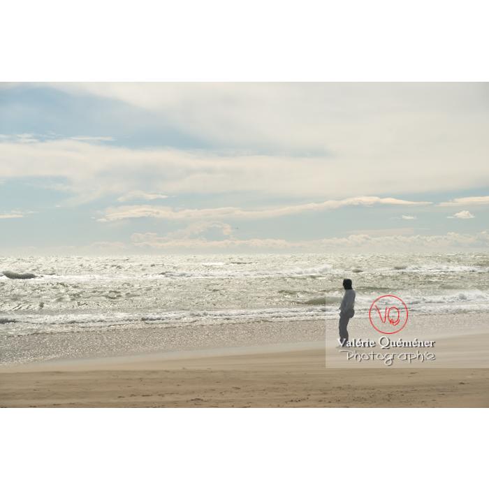 Grand vent sur la plage de l'Espiguette, petite camargue / Gard / Occitanie - Réf : VQFR30-0247 (Q3)