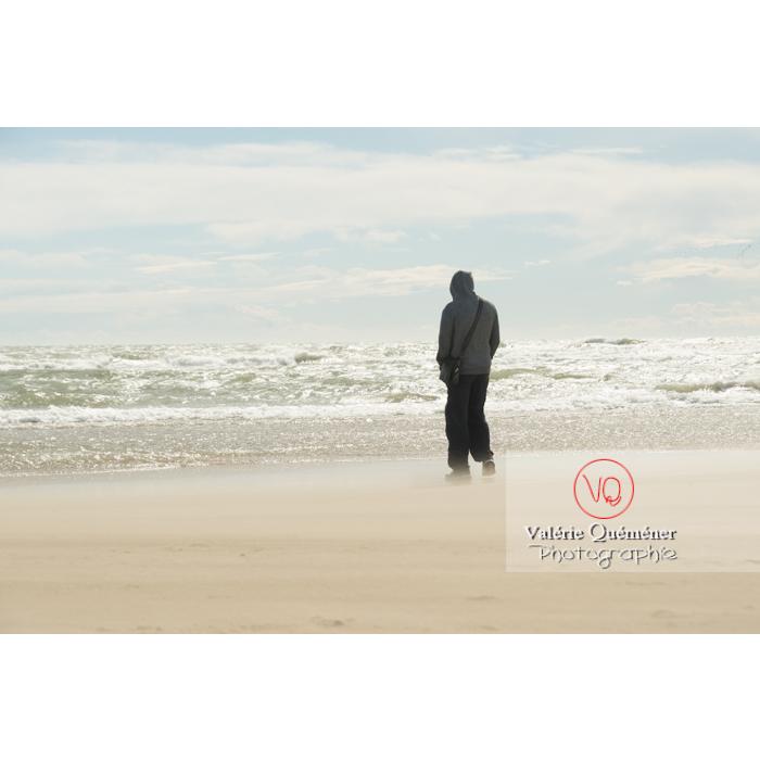 Grand vent sur la plage de l'Espiguette en petite camargue / Gard / Occitanie - Réf : VQFR30-0248 (Q3)