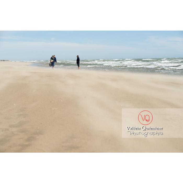 Grand vent sur la plage de l'Espiguette, petite camargue / Gard / Occitanie - Réf : VQFR30-0252 (Q3)