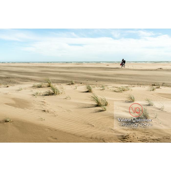 Jour de grand vent à la pointe de l'Espiguette en petite camargue / Gard / Occitanie - Réf : VQFR30-0265 (Q3)