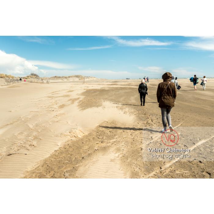 Journée de vent sur la plage de l'Espiguette, en petite camargue / Gard / Occitanie - Réf : VQFR30-0266 (Q3)