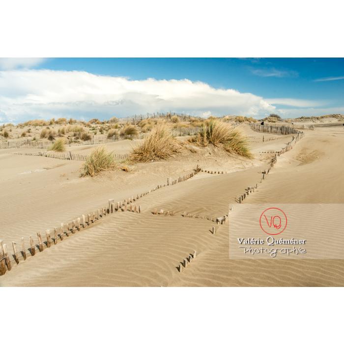 Dunes de la pointe de l'Espiguette en petite camargue / Gard / Occitanie - Réf : VQFR30-0268 (Q3)