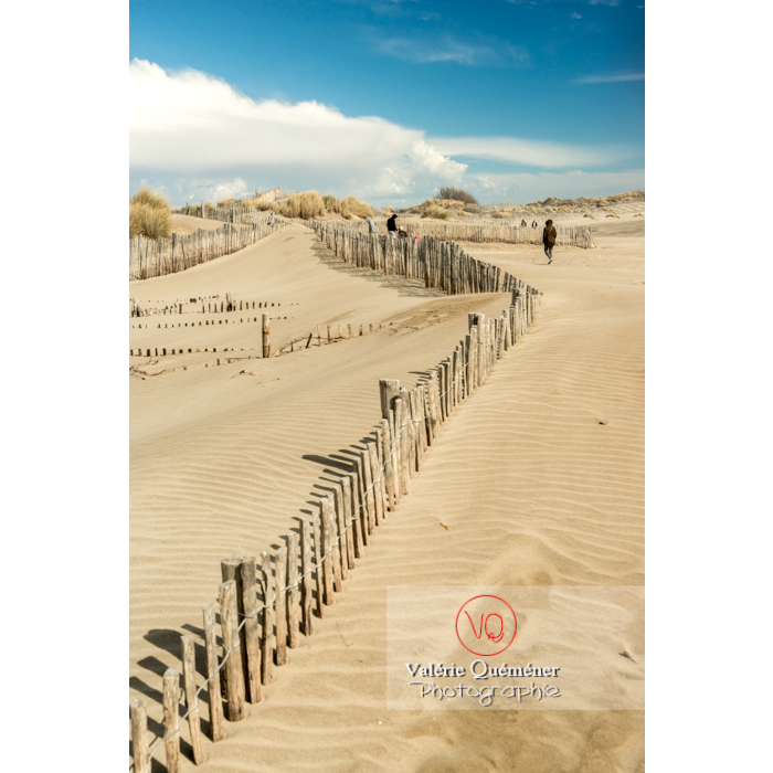 Dunes à la pointe de l'Espiguette, petite camargue / Gard - Réf : VQFR30-0270 (Q3)