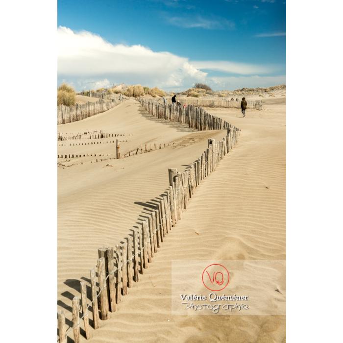 Dunes de la pointe de l'Espiguette en petite camargue / Gard / Occitanie - Réf : VQFR30-0270 (Q3)