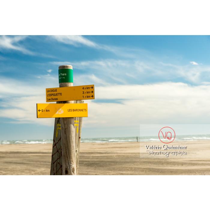 Panneaux d'orientation à la plage de l'Espiguette, en petite camargue / Gard / Occitanie - Réf : VQFR30-0271 (Q3)