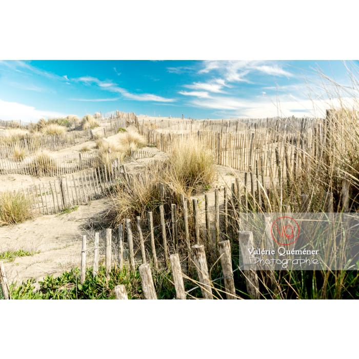 Dunes de la pointe de l'Espiguette en petite camargue / Gard / Occitanie - Réf : VQFR30-0272 (Q3)