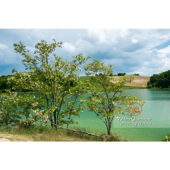 Lac de la Balerme sur la commune de Verfeil / Haute-Garonne / Occitanie - Réf : VQFR31-0092 (Q2)