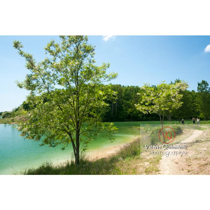 Lac de la Balerme sur la commune de Verfeil / Haute-Garonne / Occitanie - Réf : VQFR31-0094 (Q2)