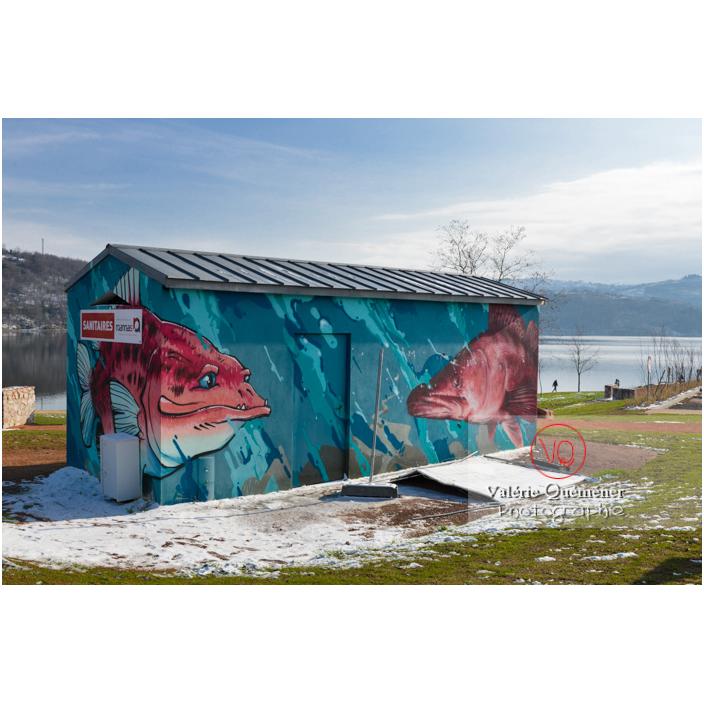 Peinture de poissons sur les sanitaires du lac de Villerest en hiver / Loire / Auvergne-Rhône-Alpes - Réf : VQFR42-0044 (Q3)