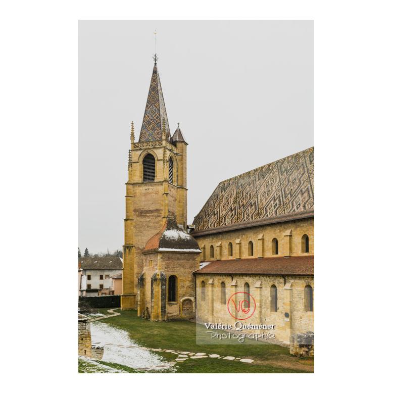 Ancienne église abbatiale (MH) de La Bénisson-Dieu / Loire / Auvergne-Rhône-Alpes - Réf : VQFR42-0117 (Q3)