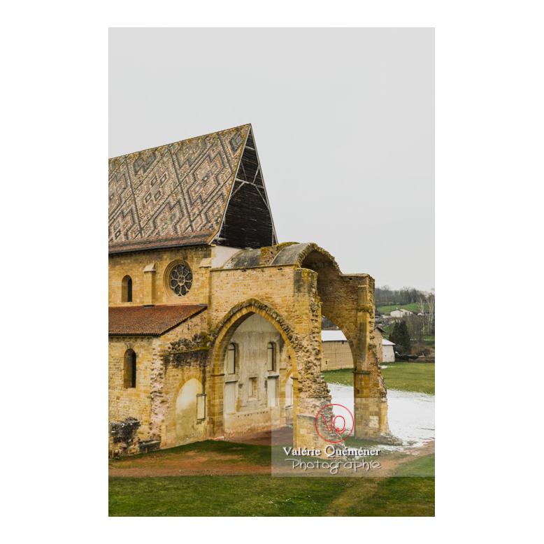 Ruines à l'arrière de l'église abbatiale (MH) de La Bénisson-Dieu / Loire / Auvergne-Rhône-Alpes - Réf : VQFR42-0118 (Q3)
