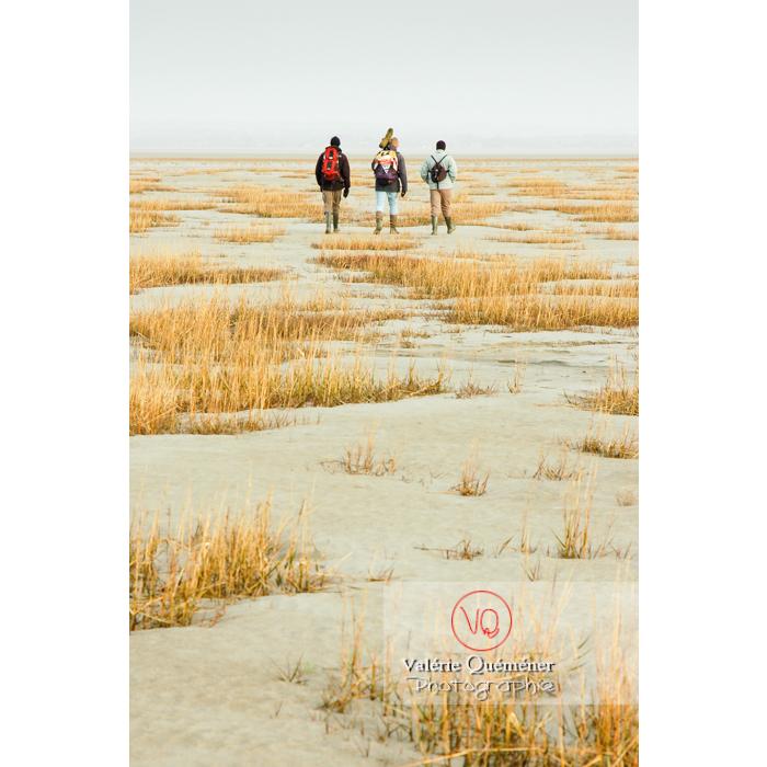 Balade dans la baie du Mont St-Michel à marée basse - Réf : VQFR50-0014 (Q1)