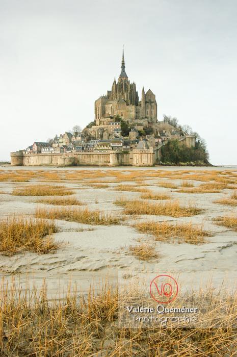 Mont-St-Michel et sa baie à marée basse / Normandie - Réf : VQFR50-0015 (Q1)