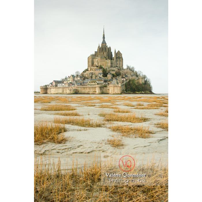 Mont St-Michel et sa baie à marée basse - Réf : VQFR50-0015 (Q1)
