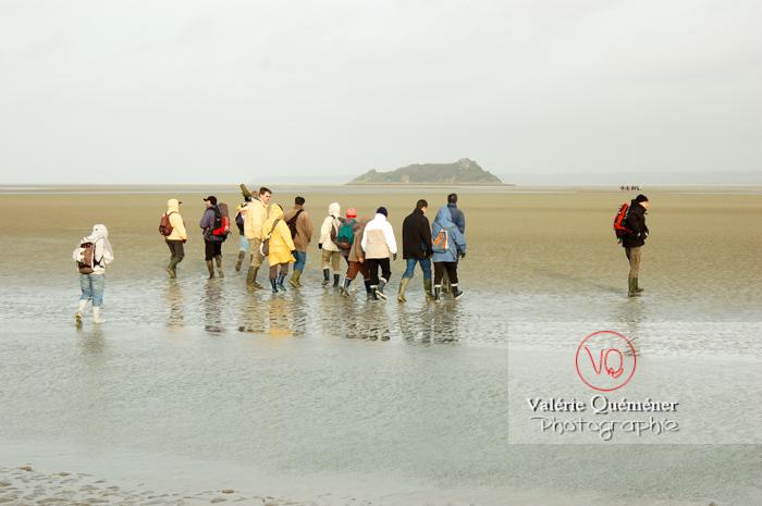 Balade à marée basse dans la baie du Mont-St-Michel / Normandie - Réf : VQFR50-0018 (Q1)