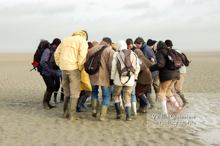 Test de sables mouvants dans la baie du Mont-St-Michel à marée basse - Réf : VQFR50-0019 (Q1)