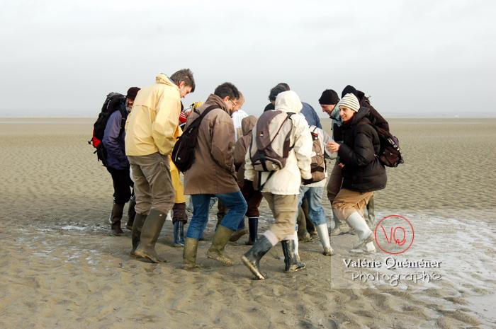 Test sables mouvants dans la baie du Mont-St-Michel à marée basse - Réf : VQFR50-0020 (Q1)