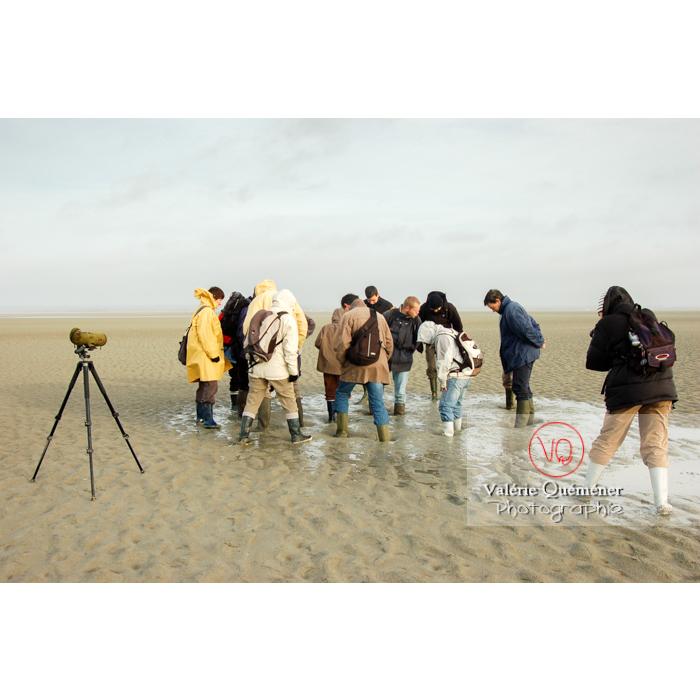 Test sables mouvants dans la baie du Mont St-Michel à marée basse - Réf : VQFR50-0021 (Q1)