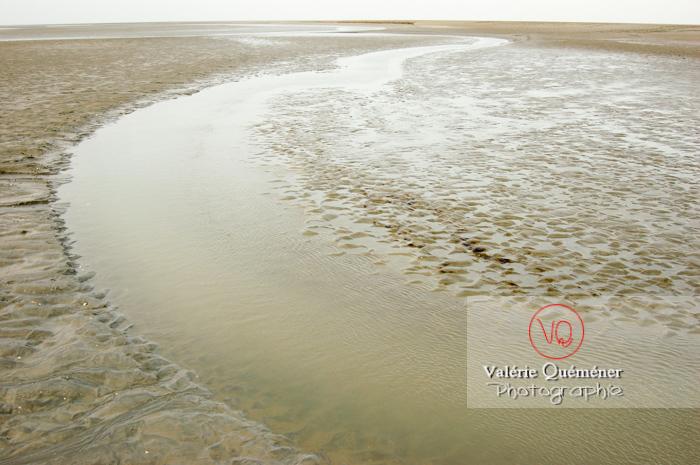 Bras de rivière dans la baie du Mont-St-Michel à marée basse - Réf : VQFR50-0027 (Q1)