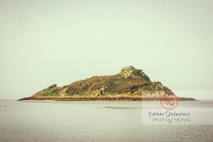 Mont Tombelaine dans la baie du Mont-St-Michel à marée basse - Réf : VQFR50-0033-TV (Q1)