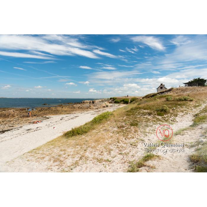 Plage du Foso sur la côte sauvage sur la presqu'île de Quiberon / Morbihan / Bretagne / France - Réf : VQFR56-0504 (Q3)