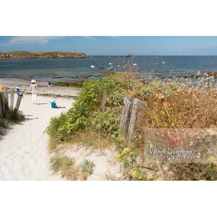 Plage du Foso sur la côte sauvage sur la presqu'île de Quiberon / Morbihan / Bretagne / France - Réf : VQFR56-0508 (Q3)
